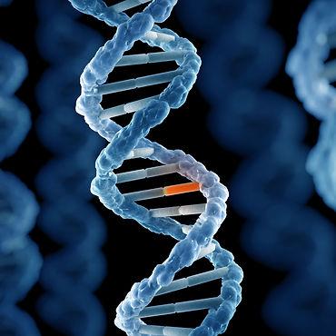 DNA mutation.jpg