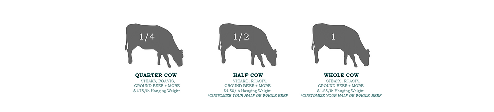 Beef Options-2 Small_2.png