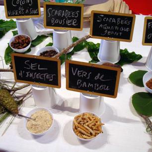 2009 | @TABLE! - Sète (Francia)