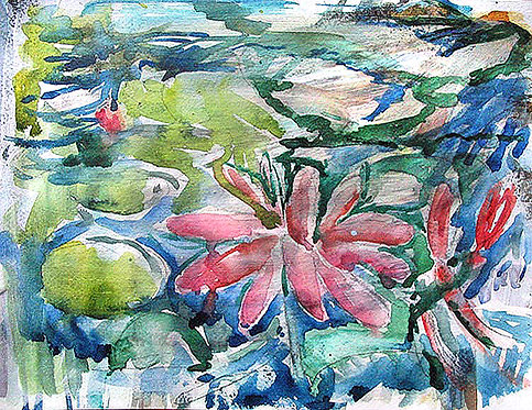Waterlily no.2