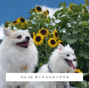 No.48 ぼくたちのなつやすみ.png