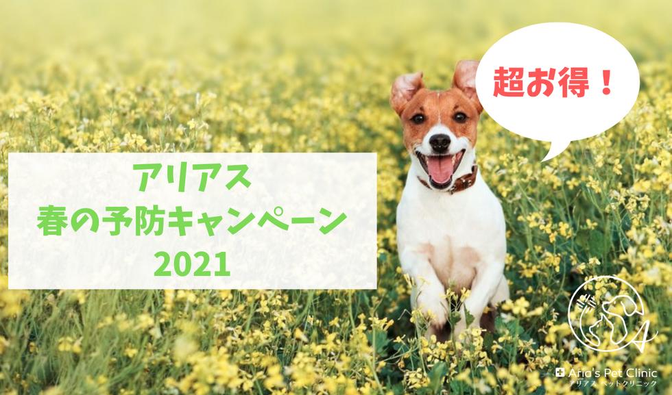 アリアス春の予防キャンペーン2021.png