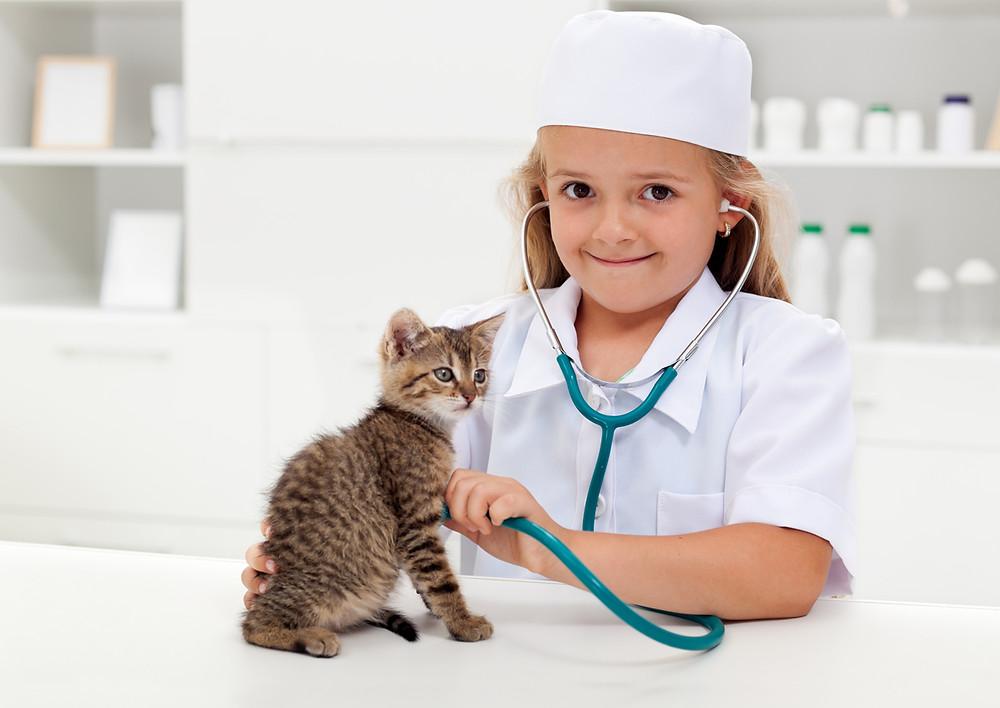 子ども獣医師体験 アリアスペットクリニック