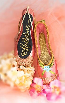 2019 Sugarplum Shoes.jpg