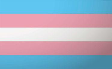 transgender-flag-995x615-iStock-53319407