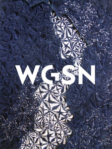 WGSN Trend Forcasting