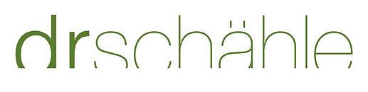 SCH_logo_Pantone.jpg