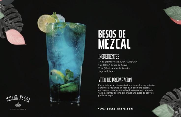 iguana negra8 copia.jpg