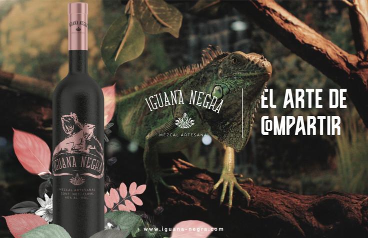 iguana negra7 copia.jpg