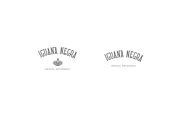 iguana negra4 copia.jpg
