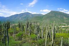 Valle de Atlixco
