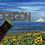"Thumbnail: ""OREGON"" Bottle Opener Keychain"