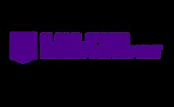 logo_GSRM_curvas-04.png