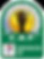 CAF-Confederation-Cup.png
