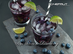 Pulpa-Selecta-de-Blueberry