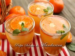 Pulpa-Selecta-de-Mandarina