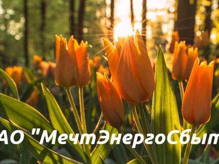 """ОАО """"МечтЭнергоСбыт"""""""