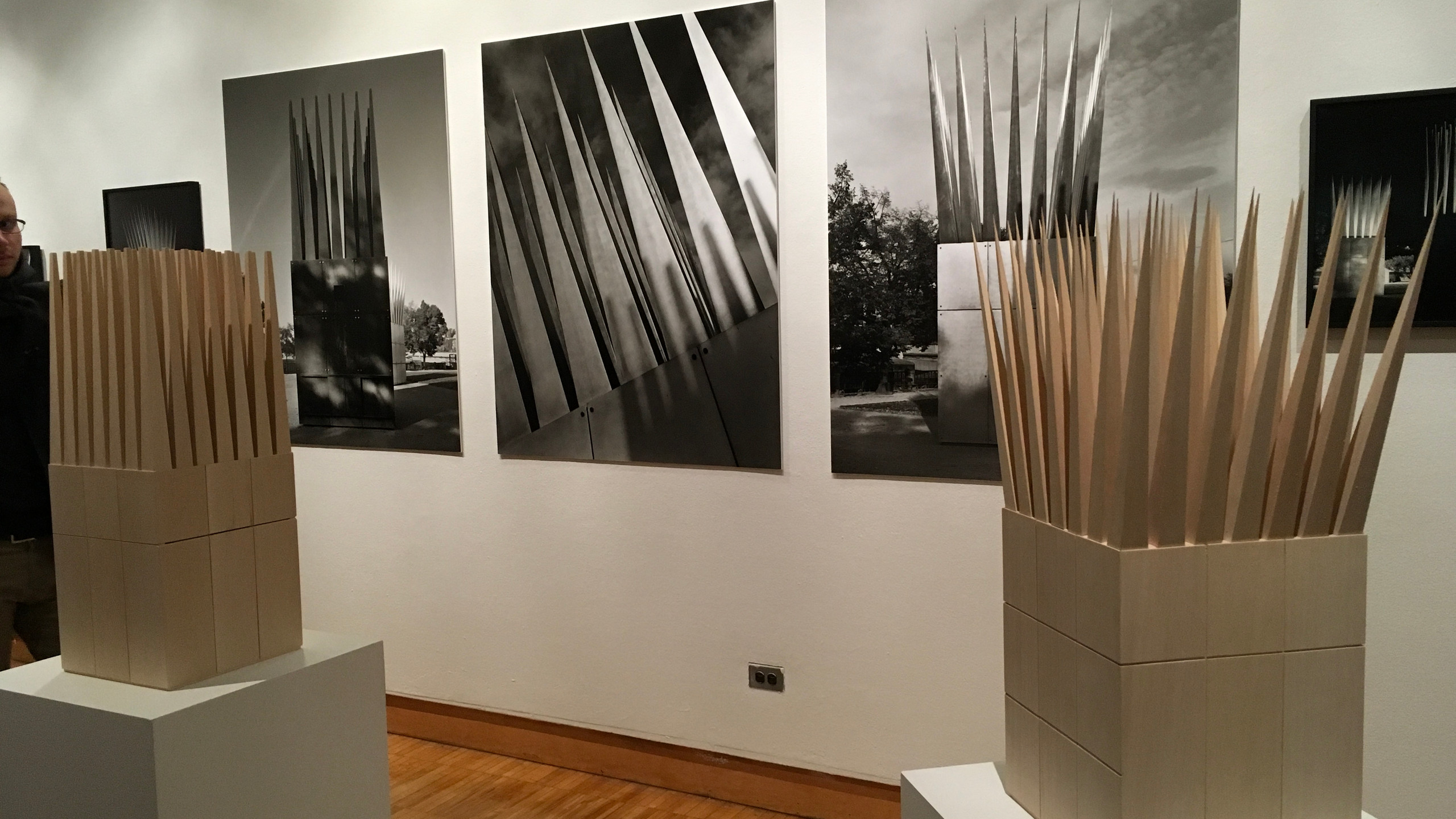 Jan Palach exhibit Photo by Al Doyle