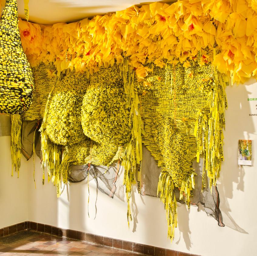 """Borinquen Gallo, Sunroom Project Space, (2017), """"CAUTION"""""""