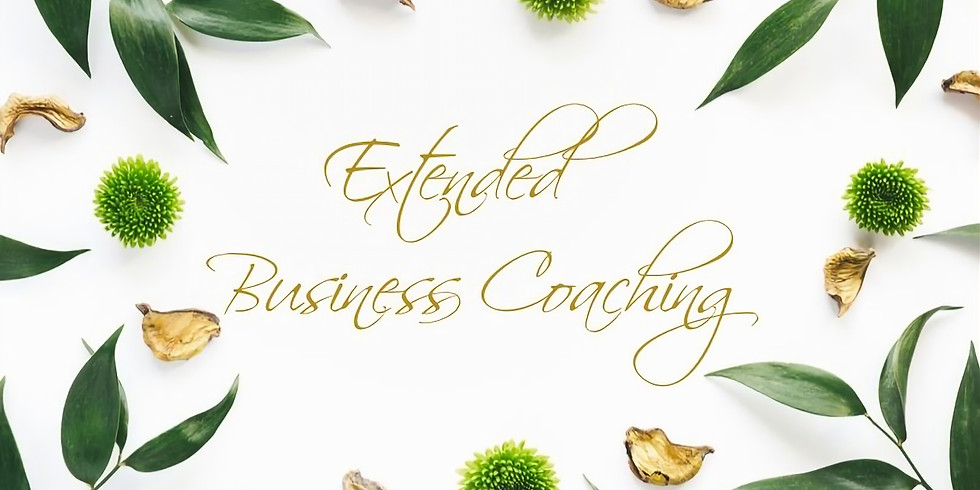 Extended Business Coaching Session with Laurie Hartwell, CEO of TBS