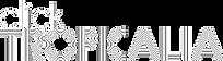 Logo CT branco.png