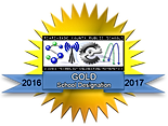 STEM - 2016-2017 - Gold.png