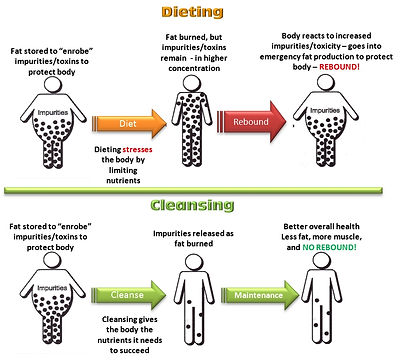 acupuncture weight loss no dieting