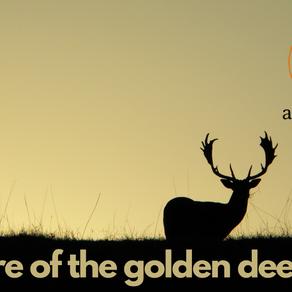 BEWARE OF THE GOLDEN DEER