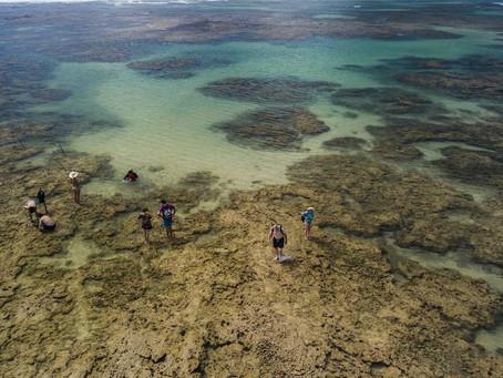 Na Bahia, ilha de Boipeba não tem carro, música alta nem turista para todo lado