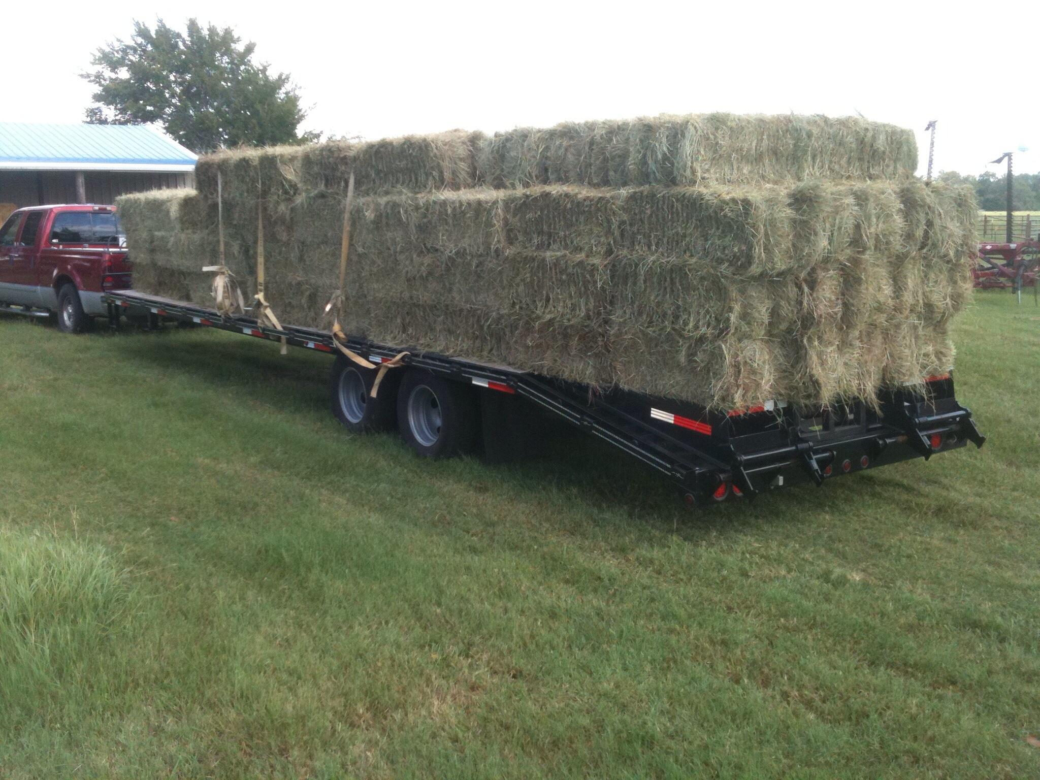 hay load.jpg