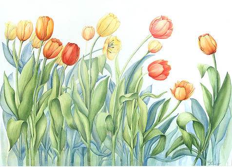 Tulips_v1.jpg