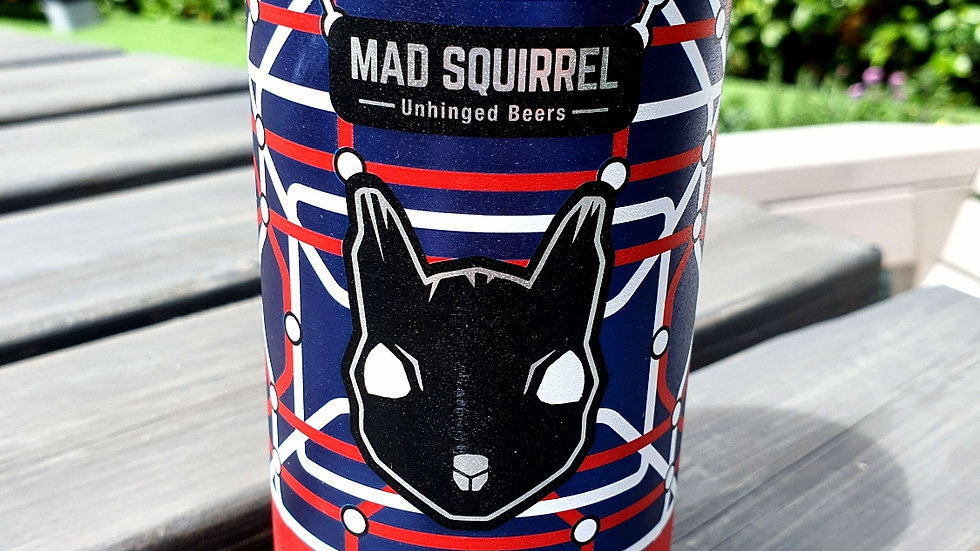 Mad Squirrel - Evolve