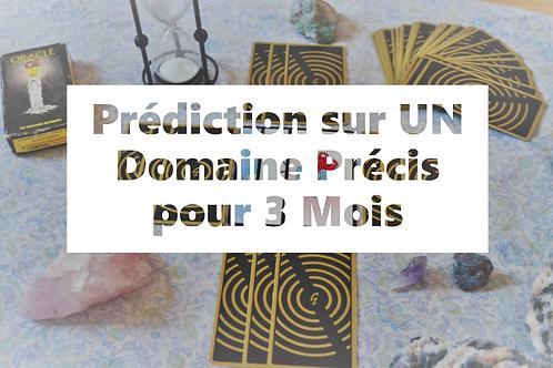 Prédiction UN DOMAINE pour 3 MOIS - Oracle Gé