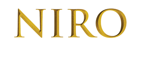 Niro Final Logo 2019-02.png