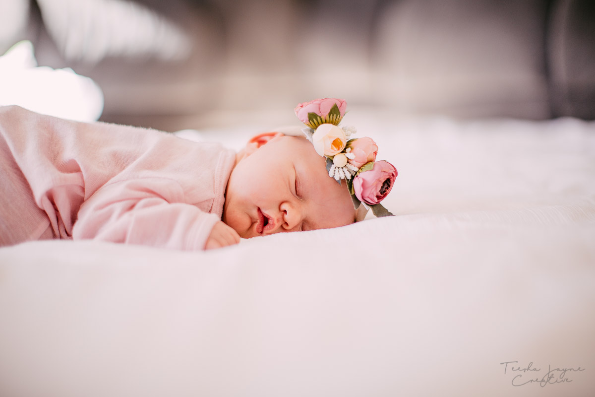 Wellington Newborn Photographer