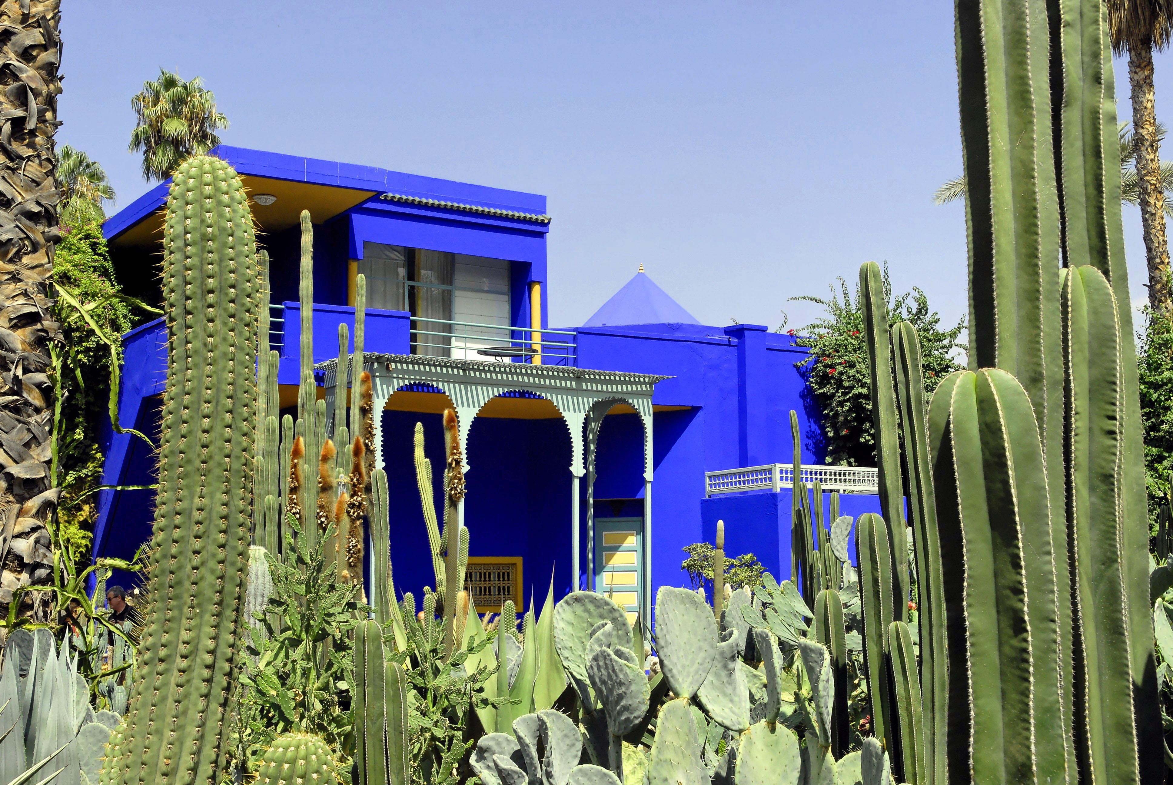 Marrakech - Majorelle gardens