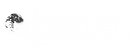Logo-Excel-WHITE.png