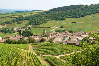 Burgundy FC Tourism
