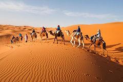 Al Assil Voyages