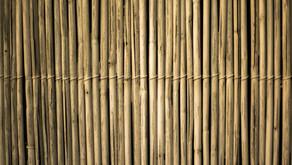 Alles wat je moet weten over bamboe stof