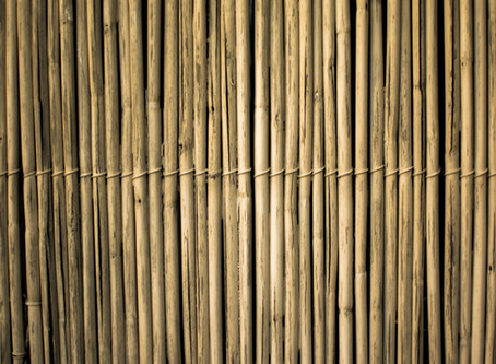 Everything you need to know about bamboo fabric