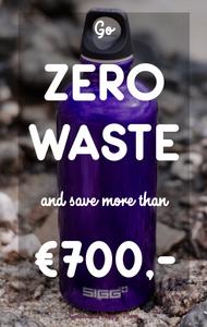 Does zero waste save money?