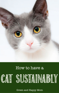 How to have a zero waste cat