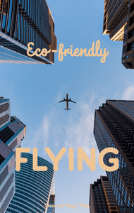 sustainable air travel