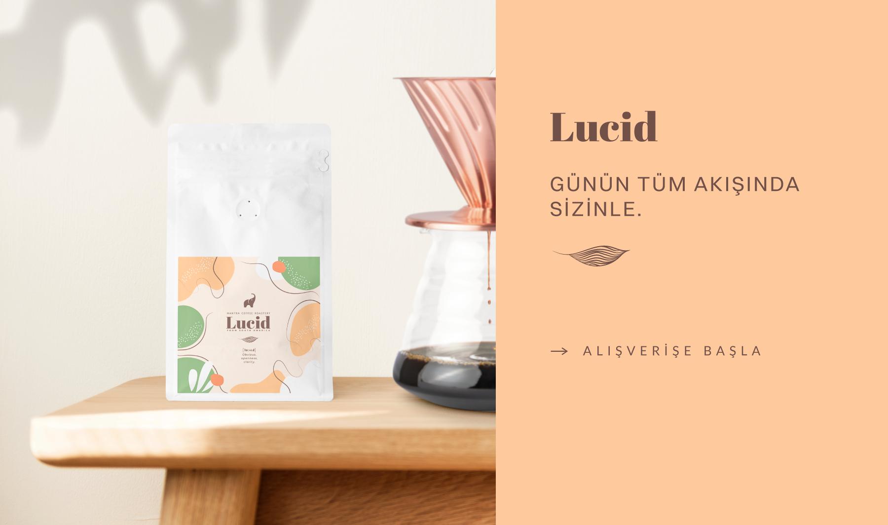 banner lucid.png