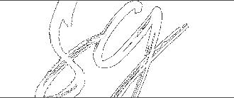 SG-Logo-WM.png