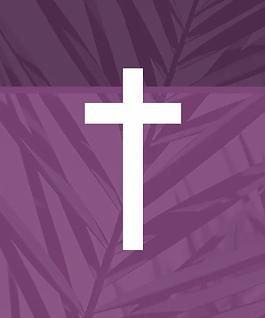 Easter-2020-Palm_homepage-slider.png.web