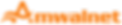 Amwalnet Logo sept 2018 orange.png