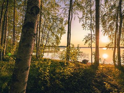 Finnish lake scenery.jpg
