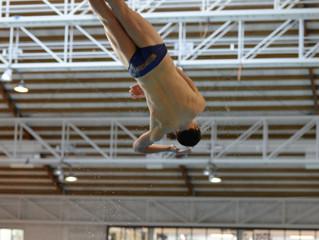 2017 WHiPA Lloyd Morrison Aquatic Athlete Scholarship awarded to diver Anton Down-Jenkins